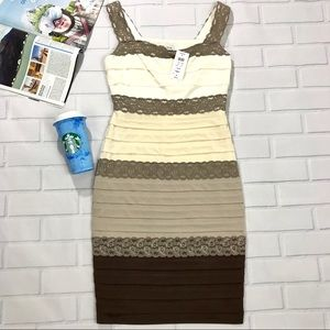 Cache Dress white brown lace ruffled size 4